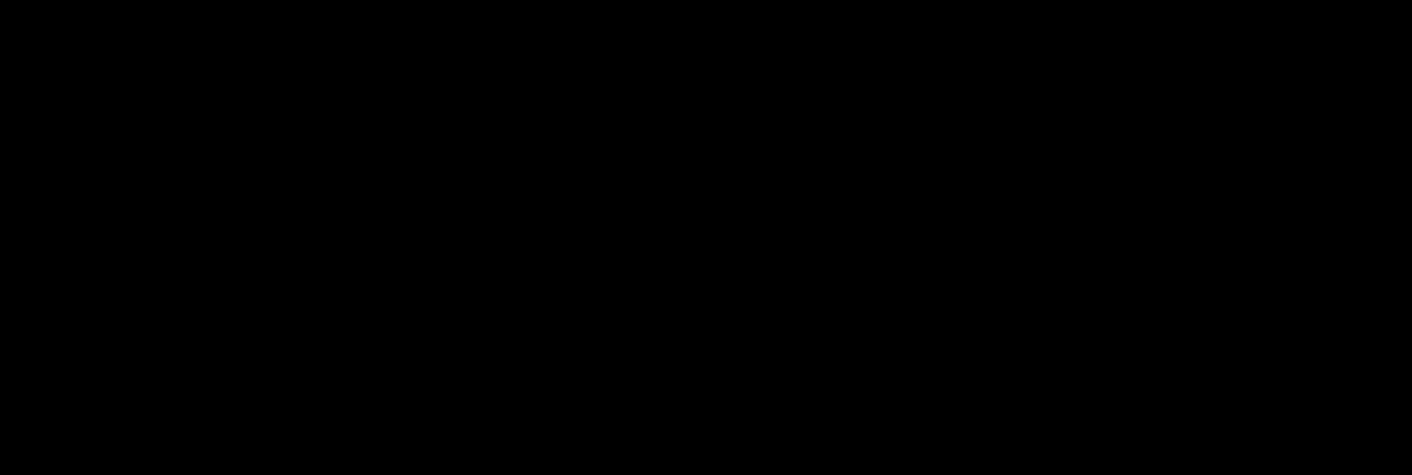 VISION logga svart